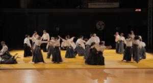 Read more about the article Démonstration de kinomichi, Clermont-Ferrand 2018