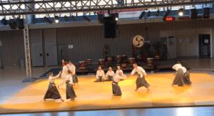 Read more about the article Démonstration de kinomichi, Clermont-Ferrand 2019